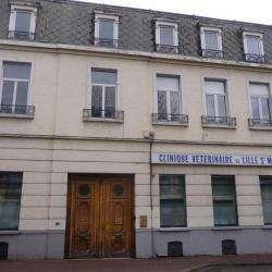 Vétérinaire De Lille Saint-maurice Lille