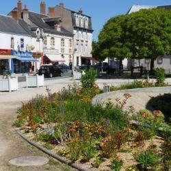 Ville et quartier Vineuil - 1 -