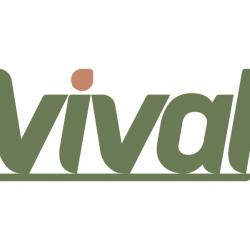 Vival Dijon