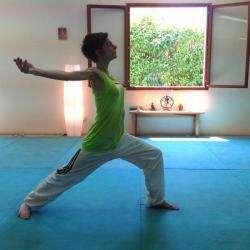 Yoga-kaivalya