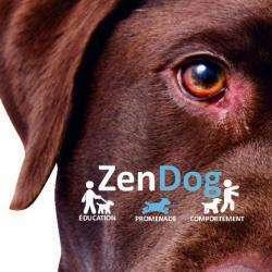 Zendog Nice