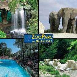 Zoo Parc De Beauval Saint Aignan