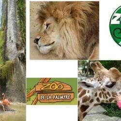 Zoo De La Palmyre Les Mathes