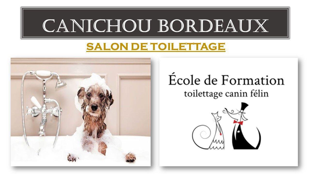 Canichou Bordeaux
