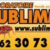Laboratoire Sublimm 97-4 Saint Denis